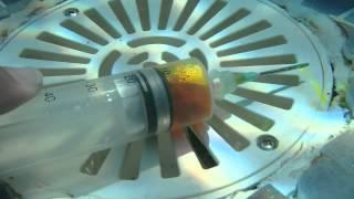 Recherche de fuite piscine - injection fluorescéine