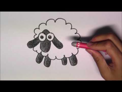 วาดรูปการ์ตูนน่ารัก ระบายสี และเรียนรู้ภาษาอังกฤษ Sheep แกะ