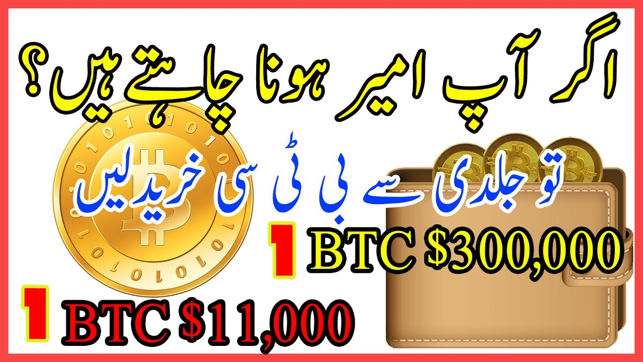 BTC Price In 2020 BITCOIN To Be Worth 11000 Urdu Hindi By Zakria 2017