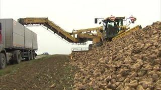 TraktorTV Folge 53 - Ropa Rübenmaus
