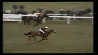 Red Rum - Rise of a Hero