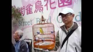 Hongkong Bird Garden