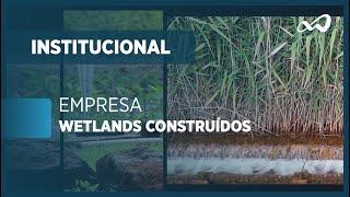 EMPRESA WETLANDS CONSTRUÍDOS | INSTITUCIONAL