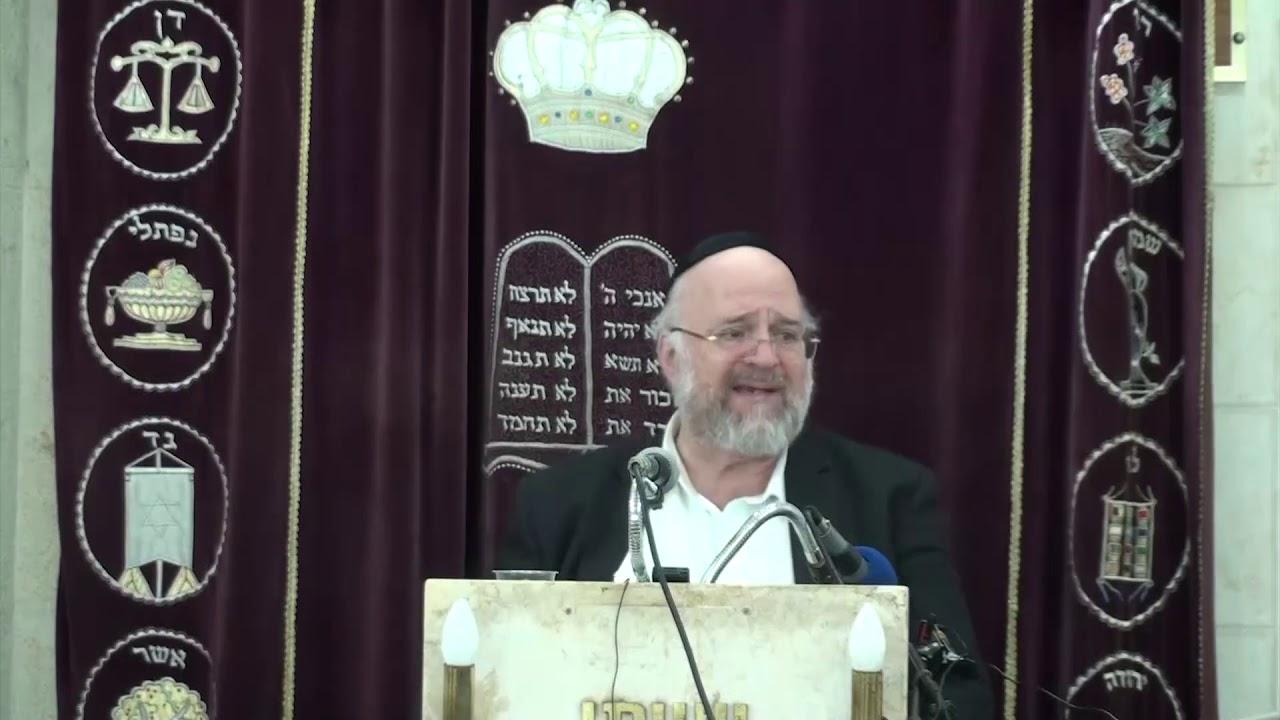 הרב רוזנבלום חוקת 4 תשעט - הרב רוזנבלום חוקת שיעור ברמה גבוהה!! Rabbi Rosenblum Chukat 4