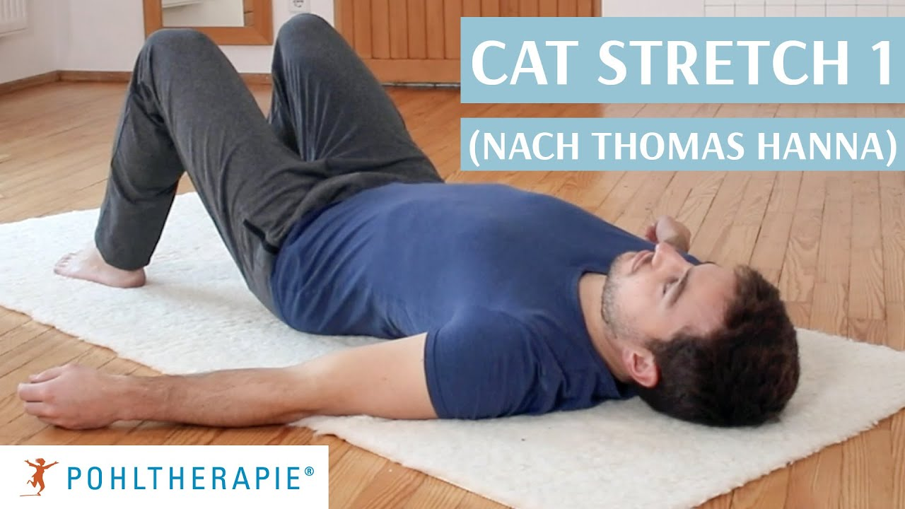 Cat Stretch 1 (nach Thomas Hanna)