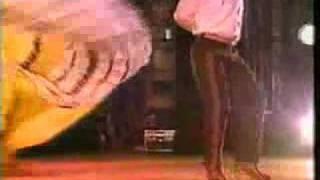 Mariachi Vargas - El Son de La Negra