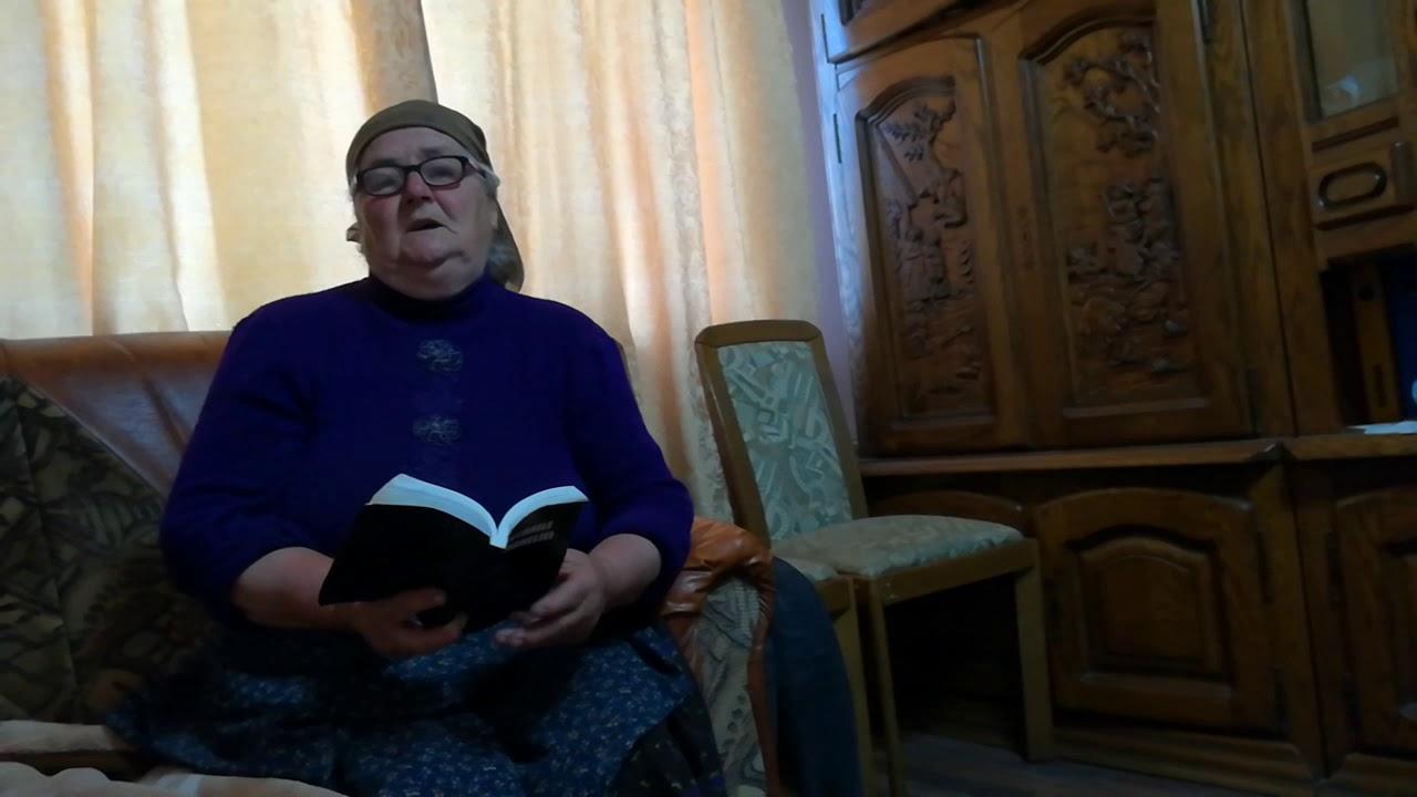 (PDF) VIRGIL CÂNDEA MĂRTURII ROMÂNEŞTI PESTE HOTARE III | Ioana Feodorov - tiboshop.ro