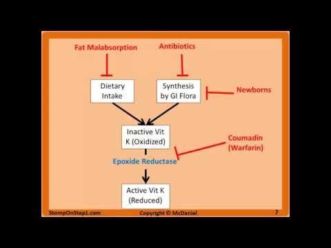 Fat Soluble Vitamin Deficiencies, Hemorrhagic Disease of the Newborn Vitamin D3 K A