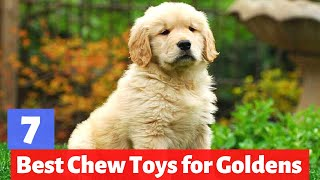 7 Best Chew Toys for Golden Retrievers | Which one is Fit for you?