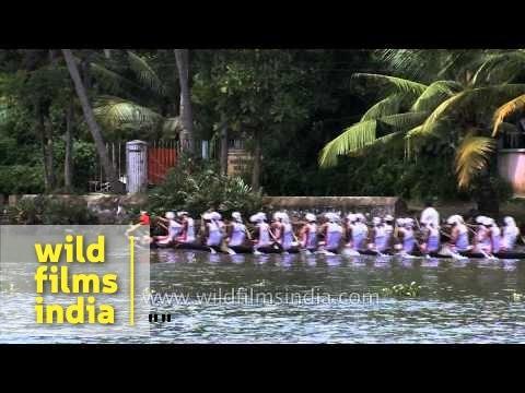 Snake boat race - Adventures water sports in Kerala