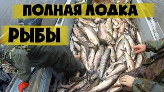 Рыбалка сплавной сетью Лов Кеты на Амуре 2018