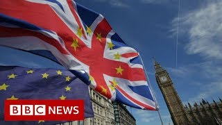 Crunching the numbers on key Brexit vote - BBC News