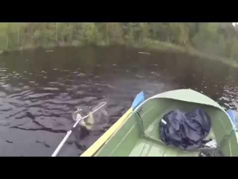 Angeln vom Boot fail