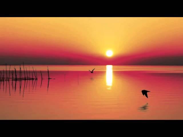 Entspannungsmusik für die Schwangerschaft: New Age Naturgeräusche Entspannung
