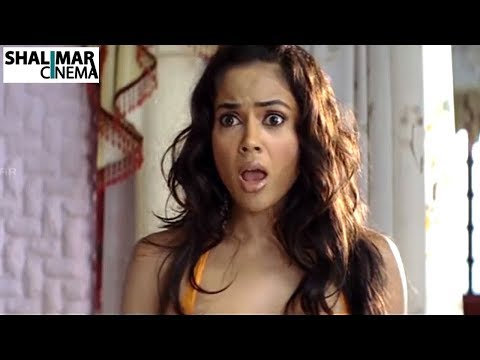 Sameera Reddy Telugu Latest Movie Scenes Back to Back || Shalimarcinema thumbnail