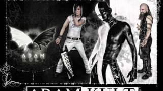 "10. F**k them (Suicidal Romance remix) - Adam Kult (""Harsh is dead"" 2009)"