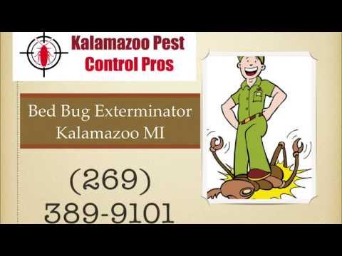 Bed Bug Exterminator - Kalamazoo Pest Control Pros