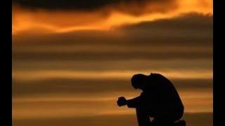 El año de la misericordia- LeCristo