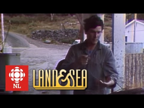 Land & Sea: The Cod Collapse In Newfoundland