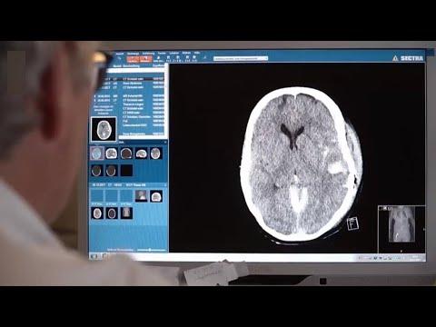 أبحاث مثيرة.. إنعاش الدماغ بعد موته وإحياء حيوانات منقرضة  - نشر قبل 4 ساعة