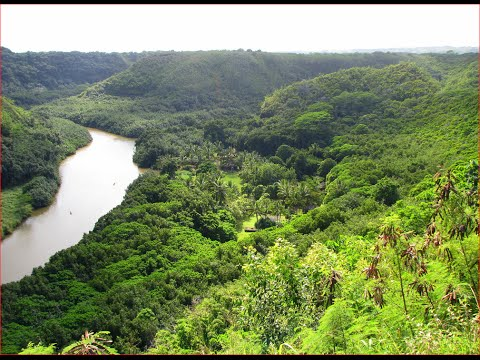 Visiting Wailua River State Park, State Park in Lihue, Hawaii, United States