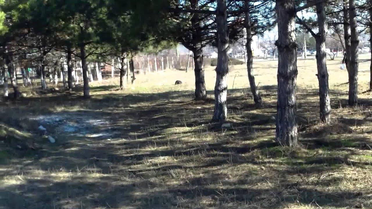 Sacrifică parcul pentru benzinării, biserici, blocuri