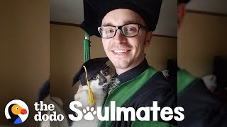 This Special Needs Cat is Stealing Her Dad's Heart | The Dodo Soulmates