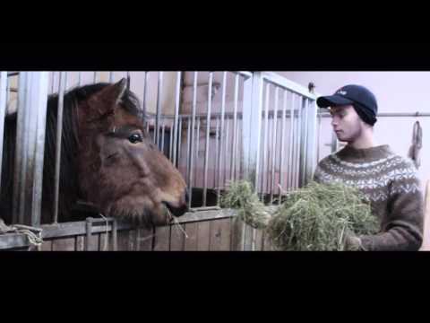 Icelandic Farmer/City Life