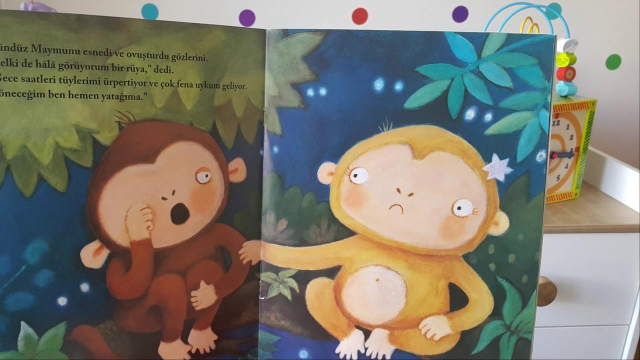 Masalcı Anne Arzu - A.Y Gece Maymunu Gündüz Maymunu