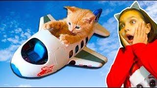 ХРАБРЫЕ vs ПУГЛИВЫЕ КОТЫ! ЛУЧШИЙ НЕ ЗАСМЕЙСЯ ЧЕЛЛЕНДЖ! Funny Cats Попробуй не засмеяться Валеришка