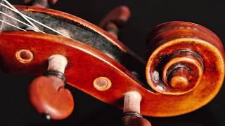 Hamari Adhuri Kahani violin cover- Apratim Nayek