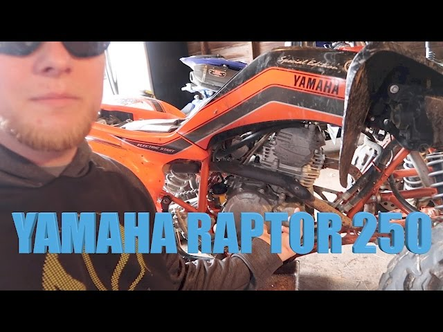 Yamaha Raptor 250 oil change
