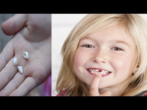Dentists Are Warning Us – DON`T THROW AWAY BABY TEETH, They Can Save Your Child`s Life!!