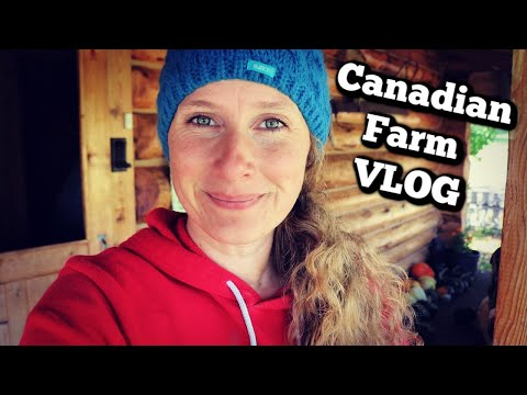 Canadian Farm VLOG | Meet the Animals | Homemade Tomato Soup