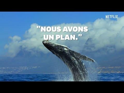 """Jour de la Terre : Le narrateur de """"Notre Planète"""" sur Netflix a un message d'espoir"""
