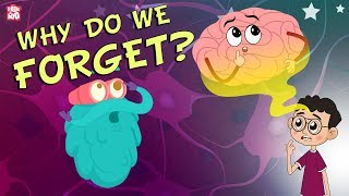 Why Do We Forget? | The Dr. Binocs Show | Best Learning Videos For Kids | Peekaboo Kidz