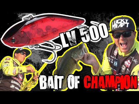 LV 500 / Bait Of Champion / Skeet Reese / All Year