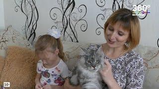 Домашние животные – тоже члены семьи