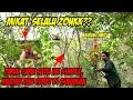 Mikat Kolibri Ninja Mengunakan Burung Hantu Dan Alat Pancing Piber Cara Mikat Simple Dan Mudah  Mp3 - Mp4 Download