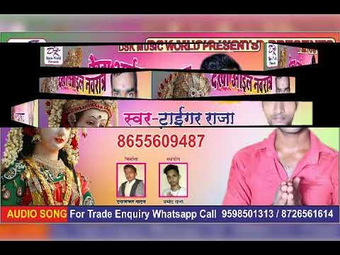Tiger singer and parmod Raja shauvg bhojpuri mp3 mp4