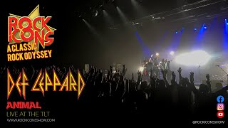 Rock Icons Show | Def leppard Animal | Live At The TLT Theatre