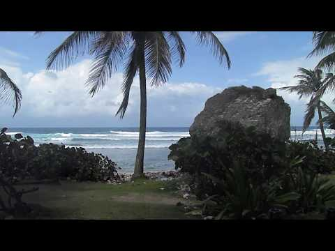 Bathsheba and Banks Beer (Barbados, March 2016)