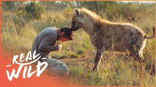 The Man Who Has A Pet Bull | Animal Odd Couples | Real Wild