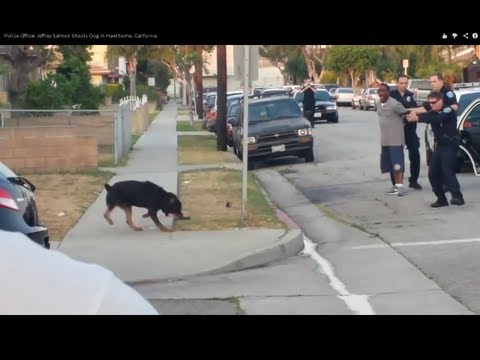(#OpProtectAnimals)Police Officer Jeffrey Salmon Shoots Dog In Hawthorne, California