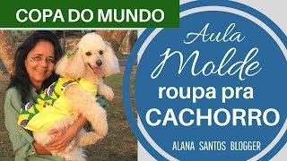 MOLDE ROUPA pra  CACHORRO - COPA DO MUNDO-  Aula de modelagem Alana Santos Blogger