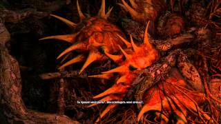 The Witcher 3: Wild Hunt (Хозяйки лесов, Дух заточенный в дерево)