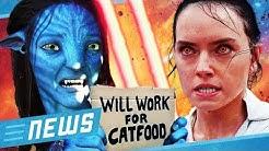 Star Wars 9: Regisseur bestätigt Fan Theorie zu Rey? & Avatar: Wer will die Sequels? - FLIPPS News