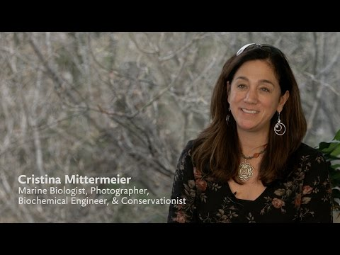 Cristina Mittermeier | The North Pole Summit