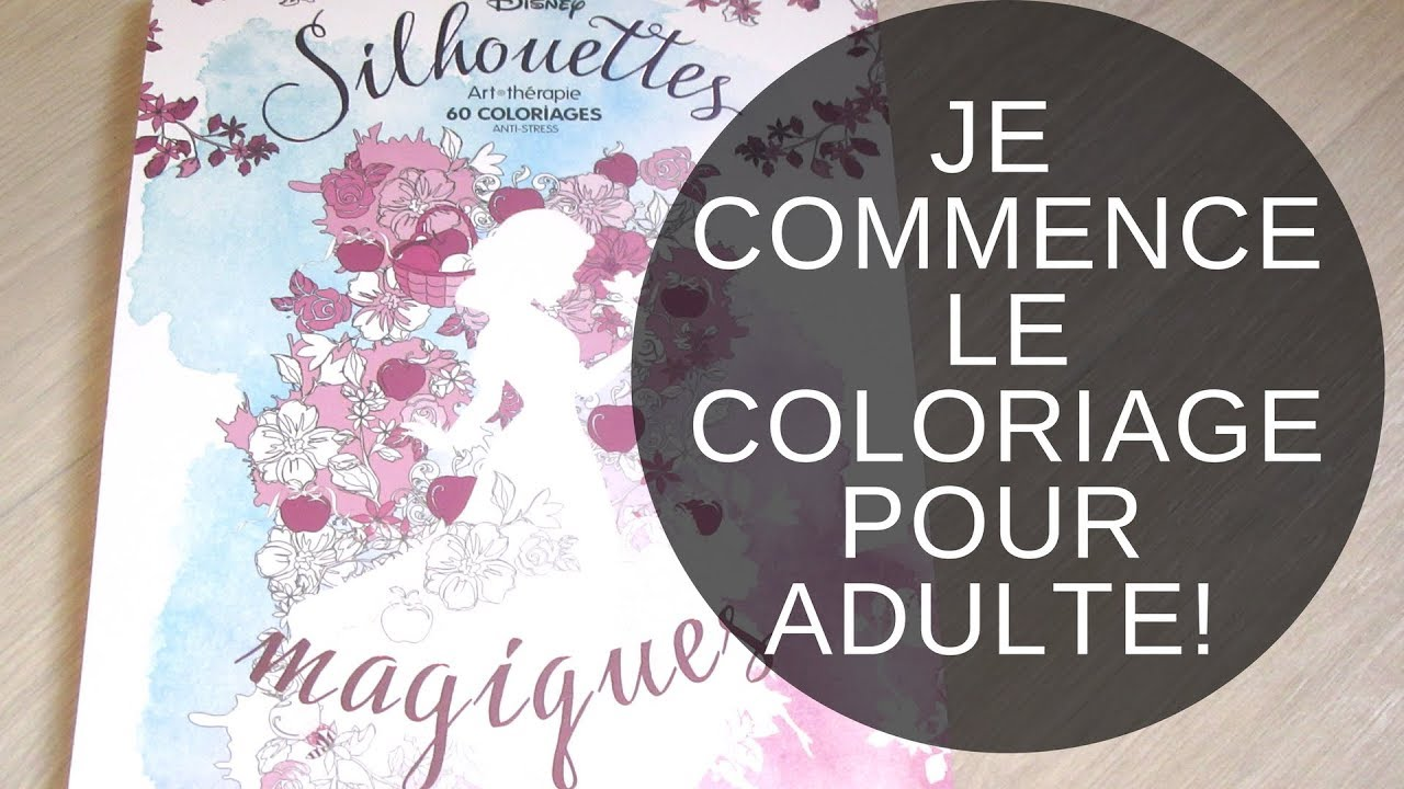 Je Commence Le Coloriage Disney Presentation Livre Silhouettes