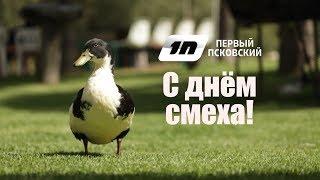 Первый Псковский # С днем смеха